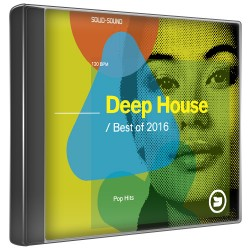 Deephouse & pop hits best of 2016