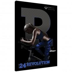 Revolution vol. 24