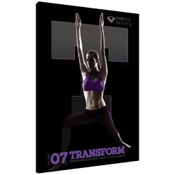 Transform vol. 7