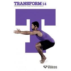 Transform Vol.14
